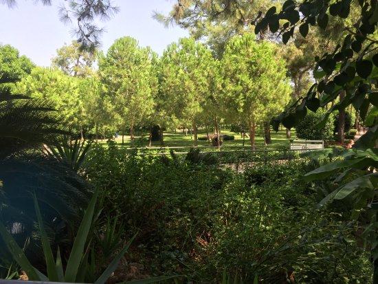 Espace Vert Et Jardin Paloma Foresta Resort Spa