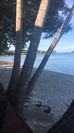 Palm Island Hotel: photo2.jpg