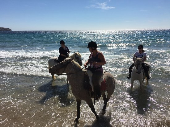 Vera, Ισπανία: Fantastic horse riding holiday in amazing terrain