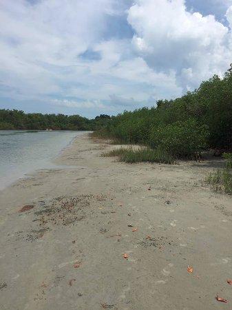 Fort Pierce, FL: beaches in park