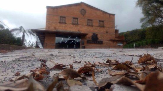 Vinicola Torcello