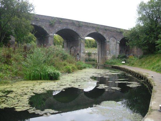 Dr Newtons Way Bridge