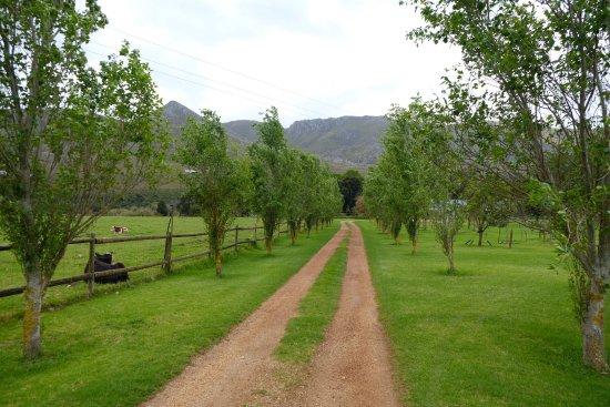 Stanford, África do Sul: photo2.jpg