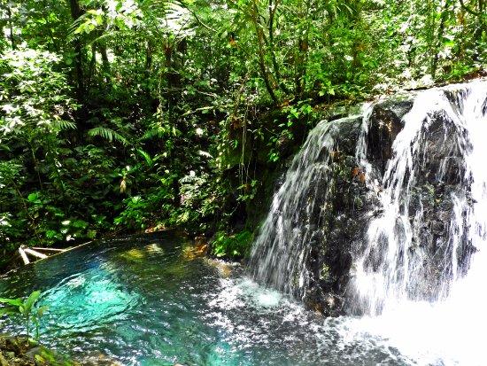 Rincon de La Vieja, Costa Rica: Thermal Pool/Waterfall
