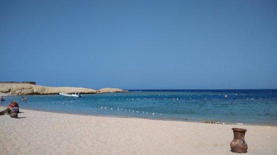 Sharm El Naga: A part pihenő teve(részlettel)