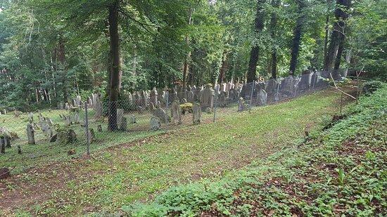 Judischer Friedhof Rexingen