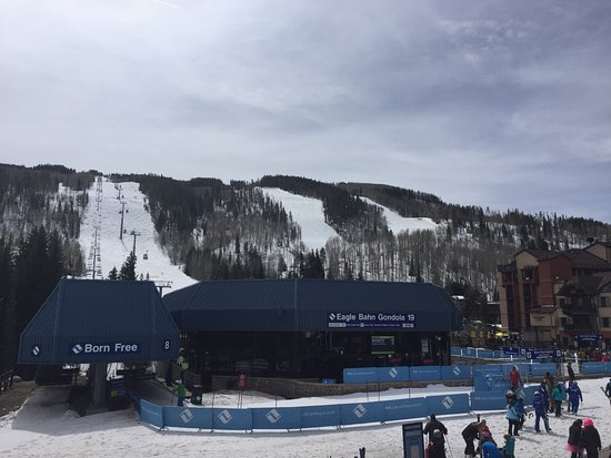 Vail Mountain Resort : photo2.jpg