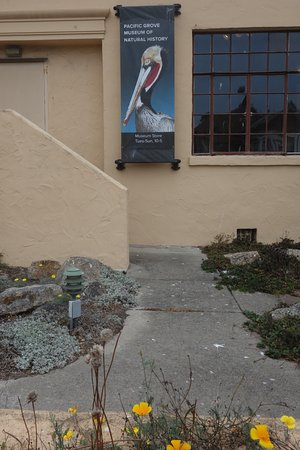 Pacific Grove Museum of Natural History: Exterior