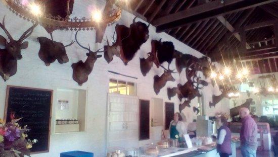 Market Drayton, UK: The tearooms