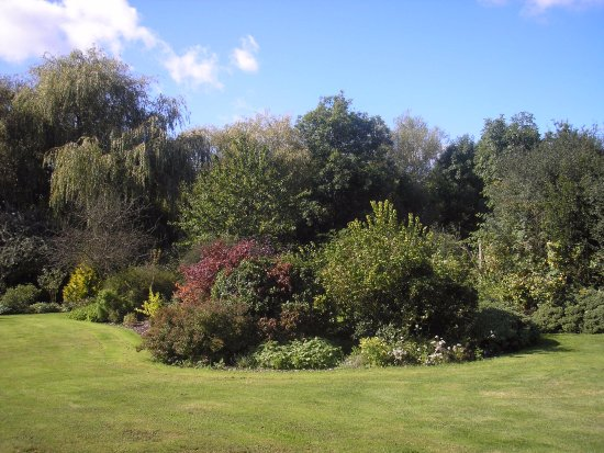 Woodchurch, UK: The garden