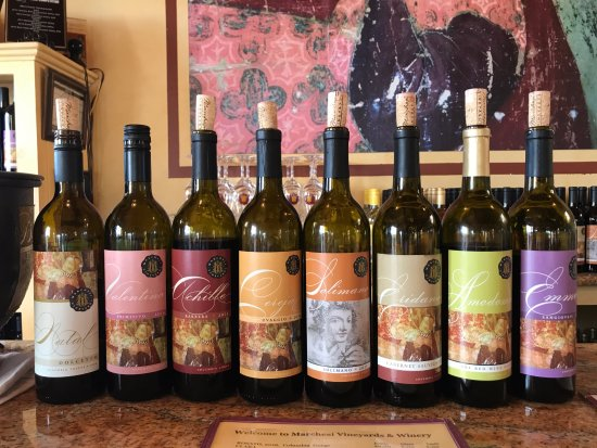 Marchesi Vineyards: Wine Line at Winery