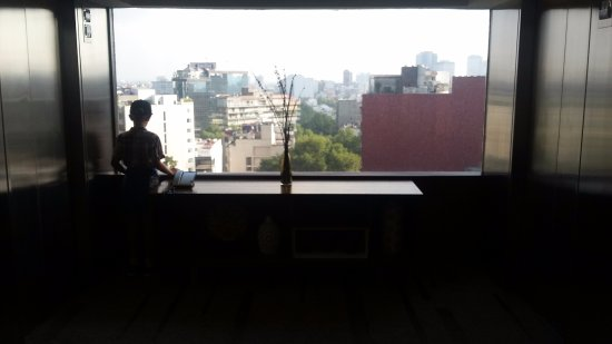 InterContinental Presidente Mexico City: View from the 18th floor.