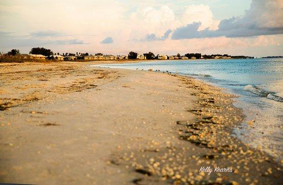Palm Island Resort Updated 2019 Prices Reviews Cape Haze Fl