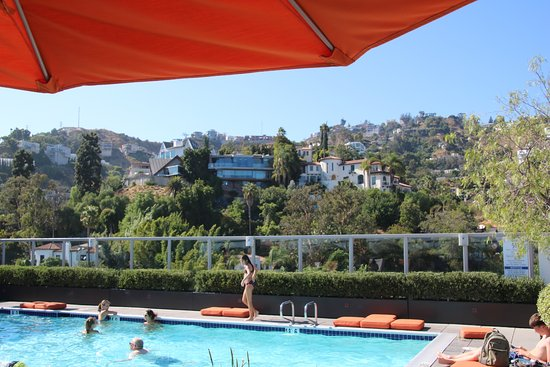 Andaz West Hollywood: Rooftop pool