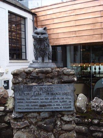 Crieff, UK: Towser, the distillery cat.