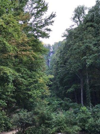 Amicalola Falls State Park : photo0.jpg