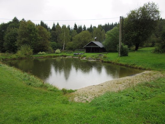 Josefův Důl, Česká republika: za hezkého počasí rybníček s grilem,lesy a houby
