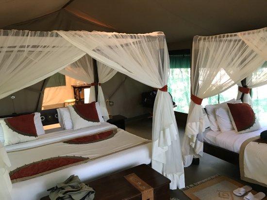 Mara Bush Camp Photo