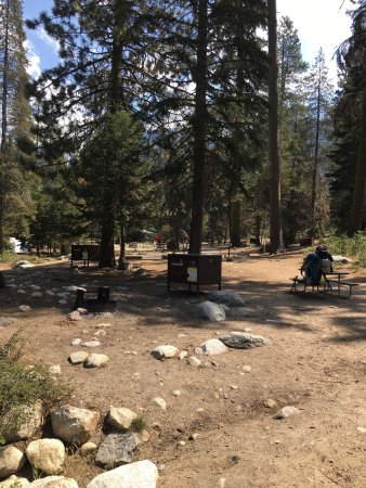 Lodgepole Campground: photo3.jpg