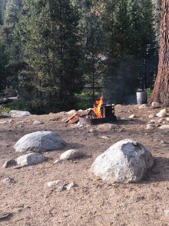 Lodgepole Campground: photo4.jpg