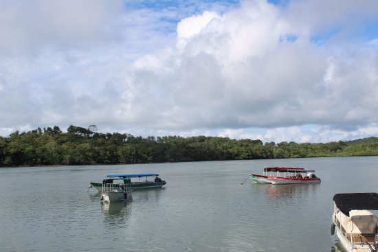 Boca Chica, ปานามา: Ready for whale watching tour°