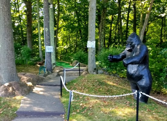 Berlin, CT: Great animal statues around every corner.