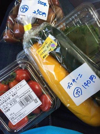 雫石町, 岩手県, photo0.jpg