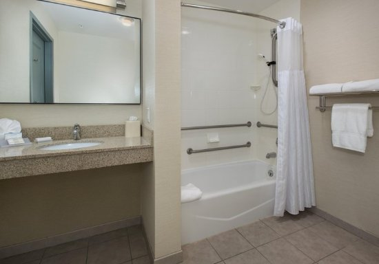 Accessible Tub - Picture of Hilton Garden Inn Albany Medical ...