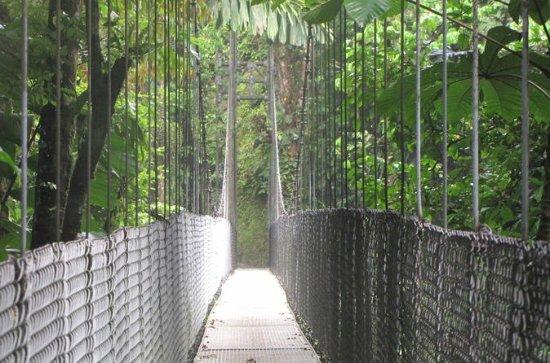 Excursión natural por los puentes...