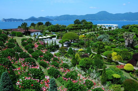 Special Oedo Island Day Trip from Busan