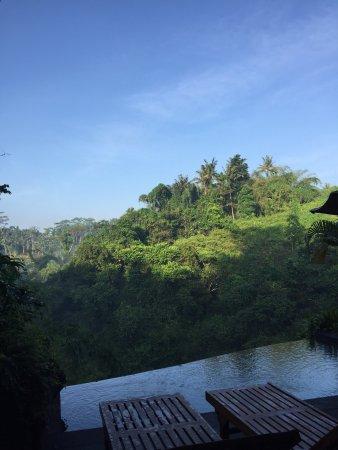 Bidadari Private Villas & Retreat: photo0.jpg