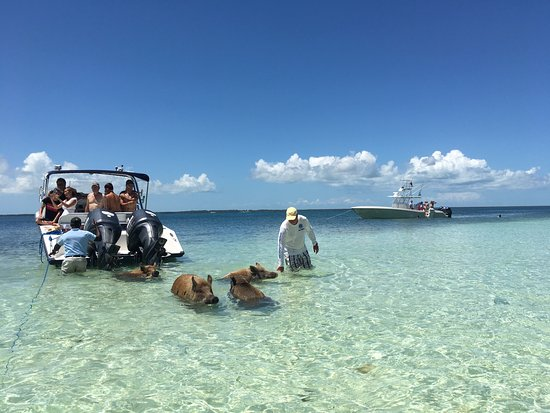 Hope Town, Elbow Cay: photo3.jpg