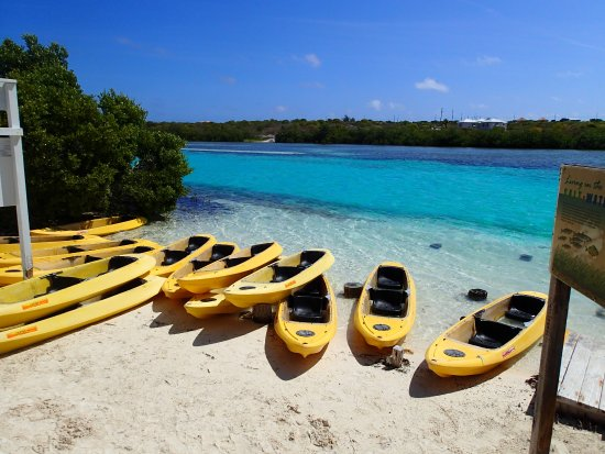 Oasis Divers: Kayaks ready to explore the Lagoon at Grand Turk