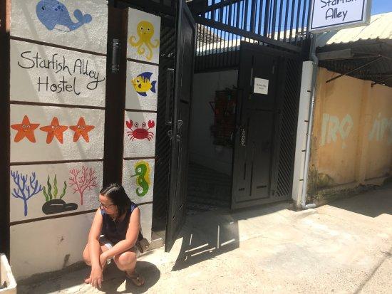 Starfish Alley Hostel Photo
