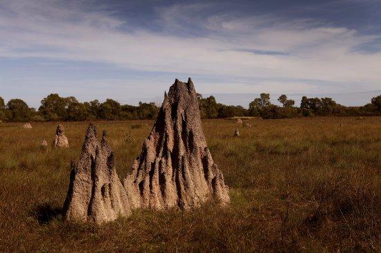 Mary River National Park, Australia: new from safari tents and habitats