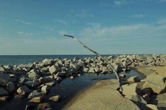 Rockport, Μασαχουσέτη: rocky shoreline
