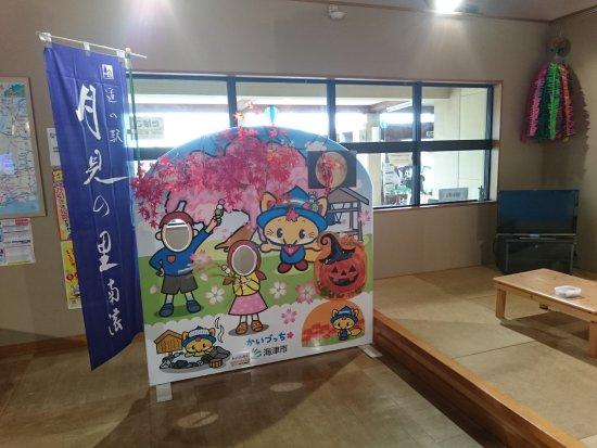 Kaizu, Japan: DSC_0022_large.jpg