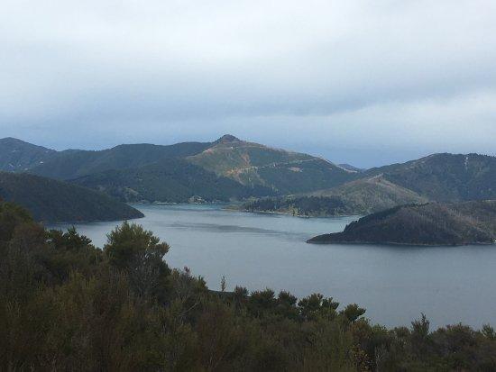 Arthurs Bay, Nueva Zelanda: photo1.jpg