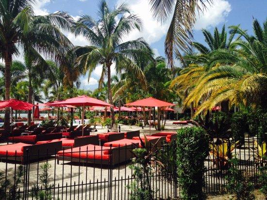 Port Saint Lucie Photo