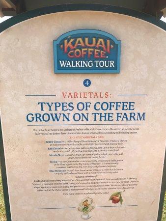 Kalaheo, Hawaï: photo3.jpg
