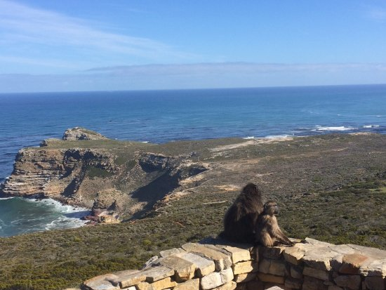 Cape of Good Hope: photo1.jpg