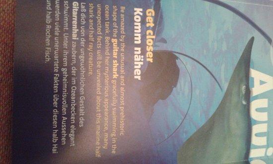 Castelnuovo del Garda, إيطاليا: Gardaland Sea Life