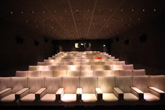 Le Royal Monceau - Raffles Paris: 99-seat Cinema