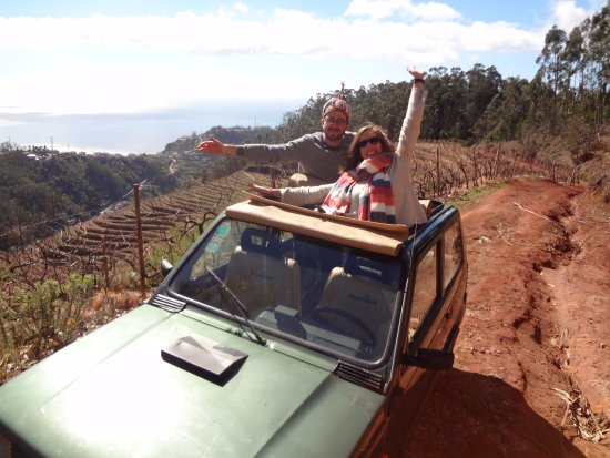 Caniço, Portugal: On Top Of The World - Vineyards