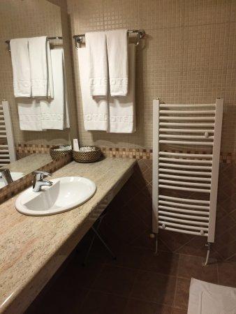 De badkamer met toilet en douche - Picture of Euro Garni Hotel ...