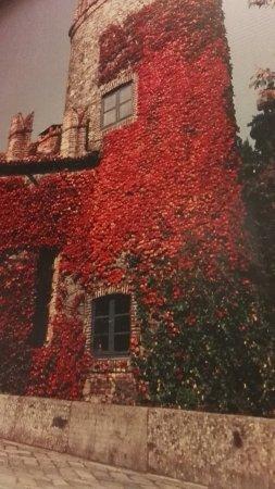 Il Castigo: Vista del castello di fronte al ristorante