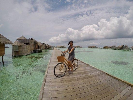 Gili Lankanfushi Maldives: photo3.jpg