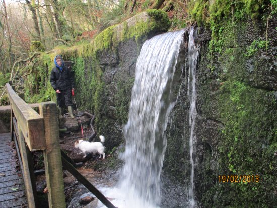 Falmouth, UK: One of the waterfalls from the leats above to the waterwheel to the left