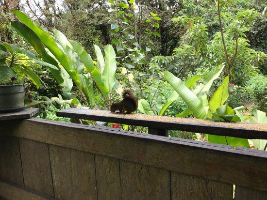 Bajos del Toro, Коста-Рика: photo1.jpg