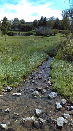 Oak Ridge, Теннесси: Small Running Creek